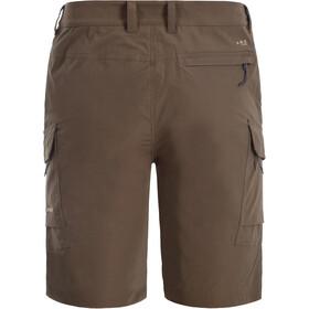 Icepeak Braswell Shorts Men, marrón
